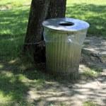 ������, ������: Keeping Parks Clean