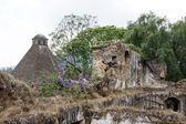 Manastır kalıntıları — Stok fotoğraf