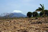 Ometepe — Stock Photo