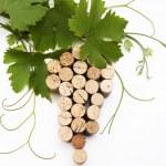 葡萄酒的概念列表设计 — 图库照片