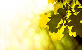 Art abstract autumn background — Stock Photo