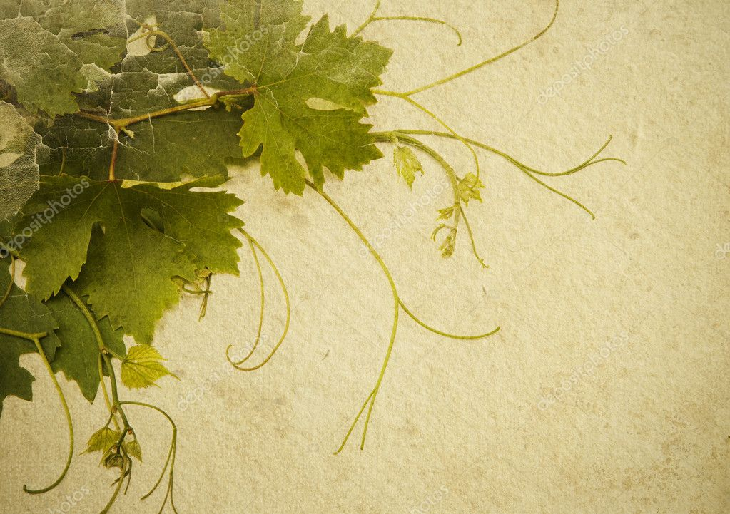 Abstrakny background to design a wine list stock photo