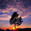 Stock Photo: Grand Teton Sunset