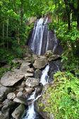 La Coca Falls - Puerto Rico — Stock Photo