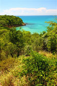 Guanica Reserve - Puerto Rico — Stock Photo