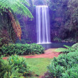 Millaa Millaa Falls - Australia - Stock Photo
