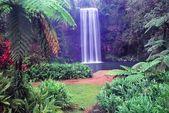 Millaa Millaa Falls - Australia — Stock Photo