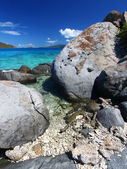 Coastline in British Virgin Islands. — Stock Photo