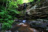 Talladega National Forest - Alabama — Stock Photo