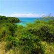 Guanica Reserve - Puerto Rico - Stock Photo