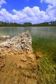 Everglades National Park - USA — Stock Photo