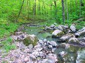 Baxterovi duté přírodní oblast státu — Stock fotografie