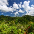 Guajataca Forest Reserve - Puerto Rico — Stock Photo
