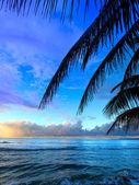 Puerto Rico Sunset — Stock Photo