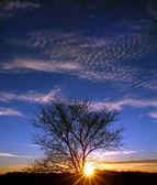 Sunset in Illinois — Stock Photo
