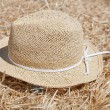 Hat over straw — Stock Photo #6216140