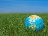 Earth globe at meadow — Stock Photo
