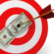 Stock Photo: Dollar target hit