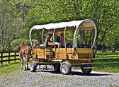 Covered Wagon on a Farm — Stock Photo