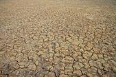Terre sèche fissurée — Photo