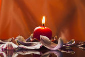One candle and tulip's petal — Stock Photo