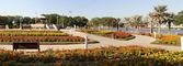 迪拜湾公园 — 图库照片