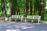 Benches in the park during the summer Kuzminki, Moscow — Stock Photo