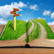Magic book with road inside and signpost — Stock Photo #6216955