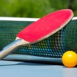 Table tennis — Stock Photo