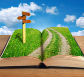 Magic book with road inside and signpost — Stock Photo