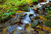 Mountain stream with clear water and mossy stones — Stock Photo