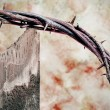 Crown of thorns and cross — Stock Photo