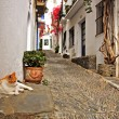A street of Cadaques, Spain - Stock Photo