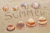 Summer on the beach — Stock Photo
