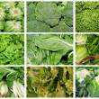 Vegetables collage - ストック写真