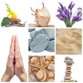 Wellness collage — Stock Photo