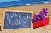 Summer love — Стоковое фото