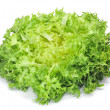 Escarole endive — Stock Photo #6196719
