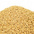 Soy lecithin granules — Stock Photo