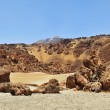 Volcanic landscape in Teide National Park, Tenerife, Canary Isla - Stock Photo