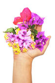 Giving flowers — Stock Photo