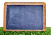 Blank blackboard on the grass — Stock Photo