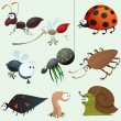 Funny insect set — Stock Vector #5775221
