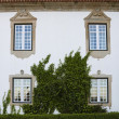 Detail of a manor in Portugal — Stock Photo #5427494
