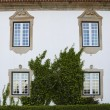 Stock Photo: Detail of a manor in Portugal