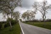 Road through the countryside — Stock Photo