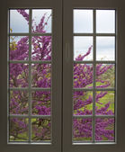 View through the window — Stock Photo