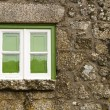 Green window of an old house — Stock Photo #5463065