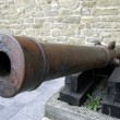 Cannon — Stock Photo #5388594