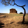 Greek Temple — Stock Photo #5481981